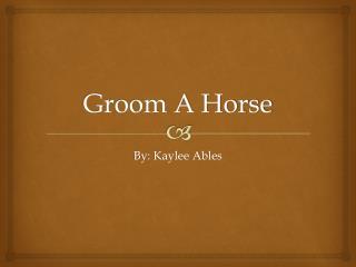 Groom A Horse