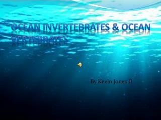 Ocean Invertebrates & Ocean Vertebrates