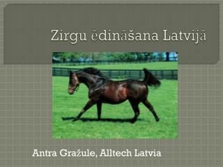 Zirgu ēdināšana Latvijā