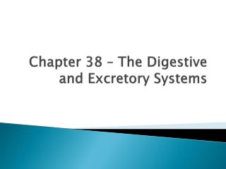 Chapter 38 – The Digestive and Excretory Systems