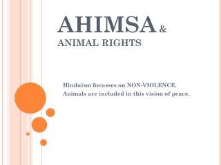 AHIMSA  & ANIMAL RIGHTS