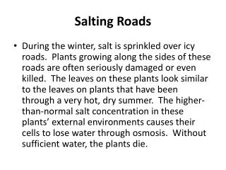 Salting Roads