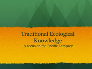 Traditional Ecological Knowledge   A focus on the Pacific Lamprey