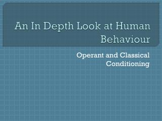 An In Depth Look at Human  Behaviour