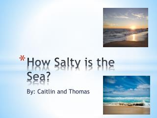 How Salty is the Sea?