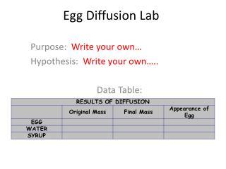 Egg Diffusion Lab