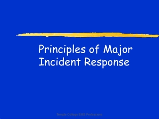 Principles of Major Incident Response