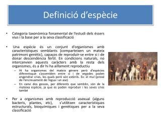 Definició d'espècie
