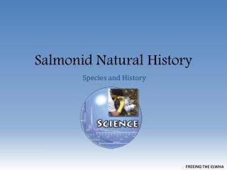 Salmonid  Natural History