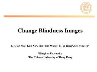 Change Blindness Images