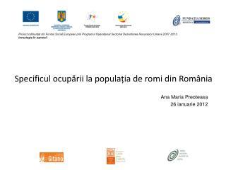 Specificul ocupării la populația de romi din România