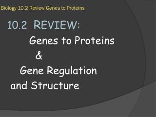 Biology 10.2 Review Genes to Proteins