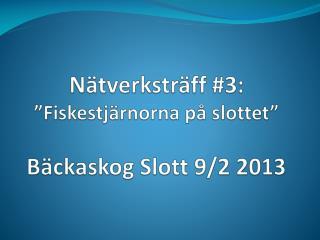 N�tverkstr�ff #3: �Fiskestj�rnorna p� slottet�  B�ckaskog Slott 9/2 2013