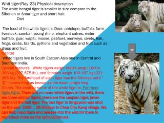 Whit tiger(Ray 23) Physica l description