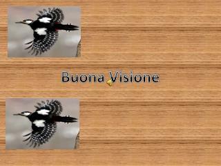 Buona Visione