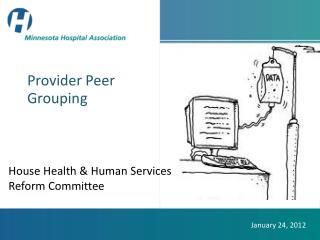 Provider Peer Grouping