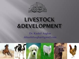 Livestock &Development