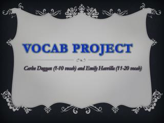 Vocab Project