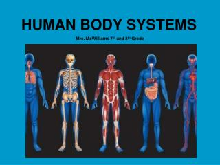 HUMAN BODY SYSTEMS Mrs. McWilliams 7 th  and 8 th  Grade