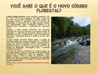 Você sabe o que é o Novo Código Florestal?