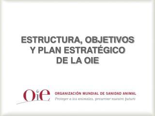 ESTRUCTURA, OBJETIVOS  Y PLAN ESTRATÉGICO  DE LA OIE