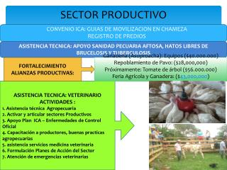 SECTOR PRODUCTIVO