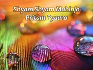 Shyam Shyam Muhinjo Pritam Pyaaro