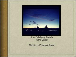Iron Deficiency Anemia Sara  Merley Nutrition – Professor Brown