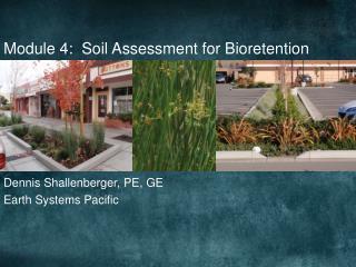 Module 4:  Soil Assessment for Bioretention