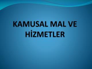 KAMUSAL MAL VE  HİZMETLER