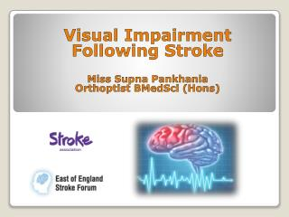 Visual Impairment Following Stroke Miss  Supna Pankhania Orthoptist BMedSci  ( Hons )