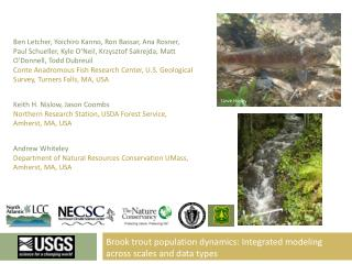 Brook trout population dynamics: Integrated modeling across scales and data types
