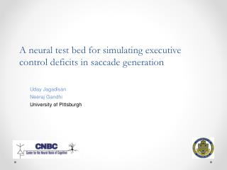 A neural test bed for simulating executive control deficits in saccade generation