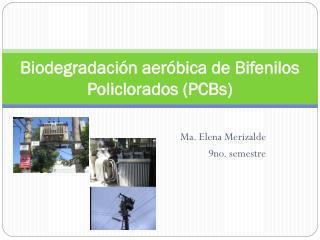 Biodegradación aeróbica de Bifenilos Policlorados (PCBs)
