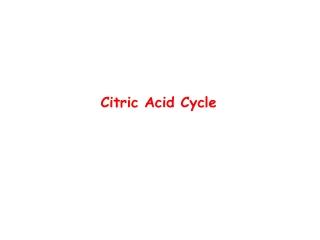 Pyruvate dehydrogenase