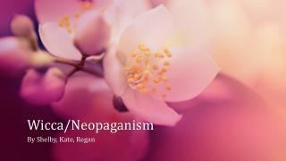 Wicca/ Neopaganism