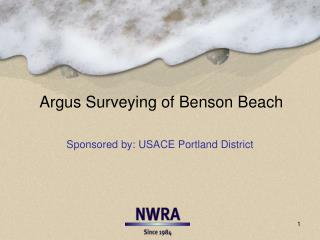 Argus Surveying of Benson  Beach