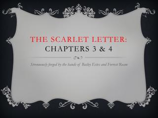 The Scarlet Letter: Chapters 3 & 4