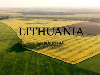 LITHUANIAN QUALITIES