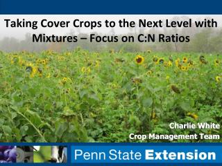 Taking Cover Crops to the Next Level with Mixtures � Focus on C:N Ratios