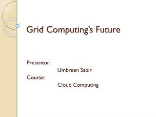 Grid  Computing's  Future
