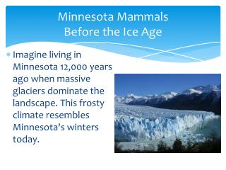 Minnesota Mammals  Before the Ice Age