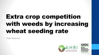 Extra crop competition with weeds by increasing wheat seeding rate
