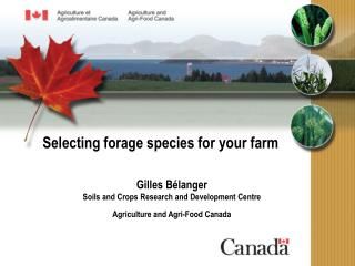 Selecting forage species for your farm