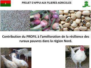 Contribution du PROFIL à l'amélioration de la résilience des ruraux  pauvres dans  la région Nord.