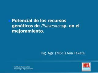 Potencial de los recursos genéticos de  Phaseolus sp. en el mejoramiento .