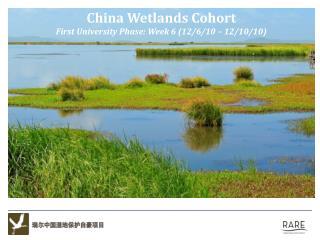 China Wetlands Cohort First University Phase: Week  6 (12/6/10  –  12/10/10 )