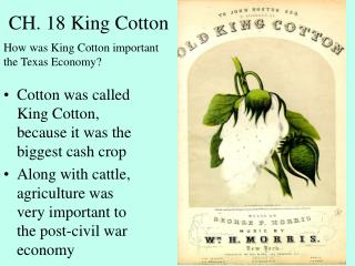 CH. 18 King Cotton