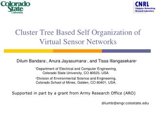 Cluster Tree Based Self Organization of Virtual Sensor Networks