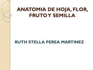 ANATOMIA DE HOJA, FLOR, FRUTO Y SEMILLA